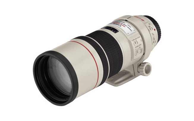 Canon EF 300mm f/4.0 L IS USM-1